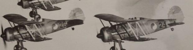 Gloster 'Irish' Gladiator